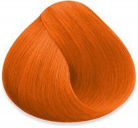 concentrates orange